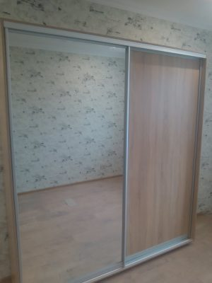 Шкаф-купе ВН204 (ДСП+зеркало)