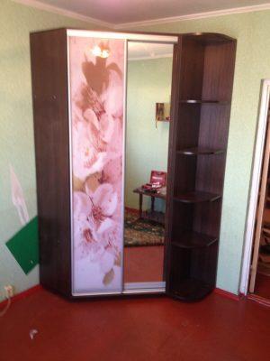 Угловой шкаф-купе ВУ1100 (фотопечать+зеркало)