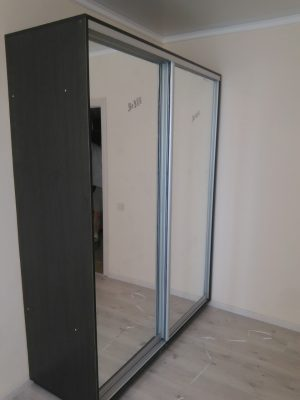 Шкаф-купе В176 (зеркала)