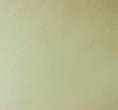 Ткань Мустанг Ivory - велюр шлифованный